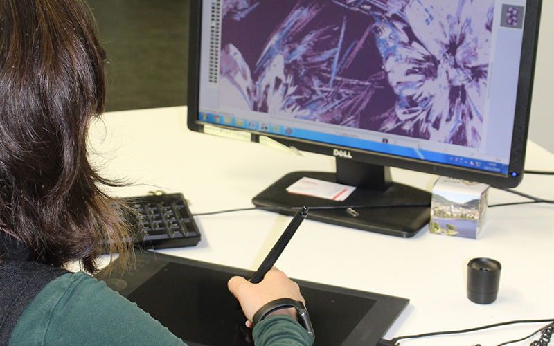 Employee at the computer with graphics tablet